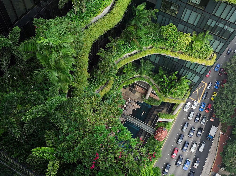 Creating a 'garden' in Singapore