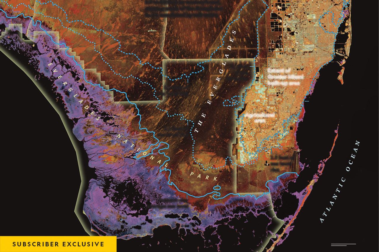 This map uses false-color infrared satellite imagery to highlight land cover that could be transformed.